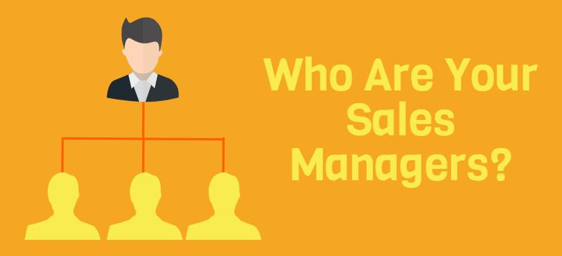Sales Manager Job Description